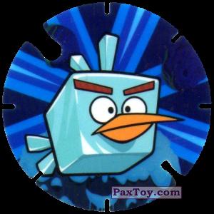 10 Icecube Bird