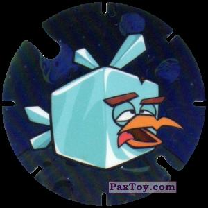 14 Icecube Bird