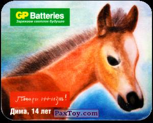 PaxToy.com - 02 Конь - Дима, 14 Лет из GP Batteries: Магниты - Подари Жизнь!