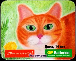 PaxToy.com - 08 Кот - Дима, 14 Лет из GP Batteries: Магниты - Подари Жизнь!