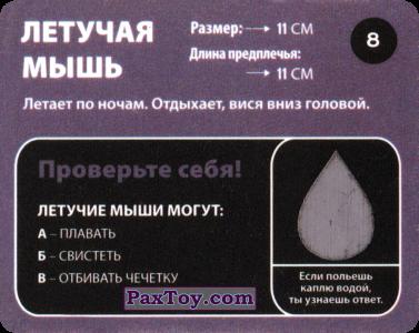 PaxToy.com - 08 Летучая Мышь (Сторна-back) из