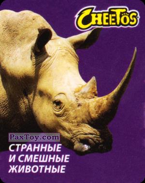 PaxToy.com - 27 Носорог белый из Cheetos: Странные и Смешные Животные