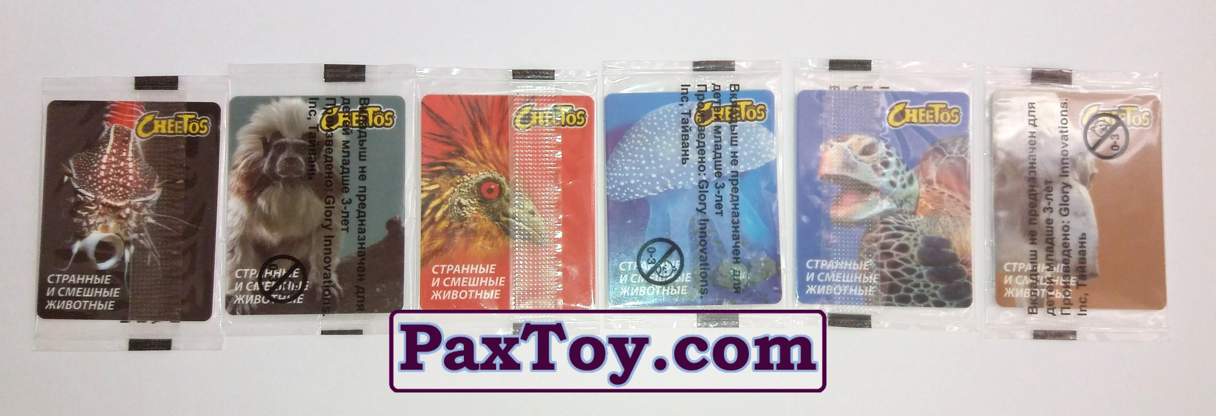 Cheetos Странные и Смешные Животные (в оригинальной упаковке) - 01 paxtoy