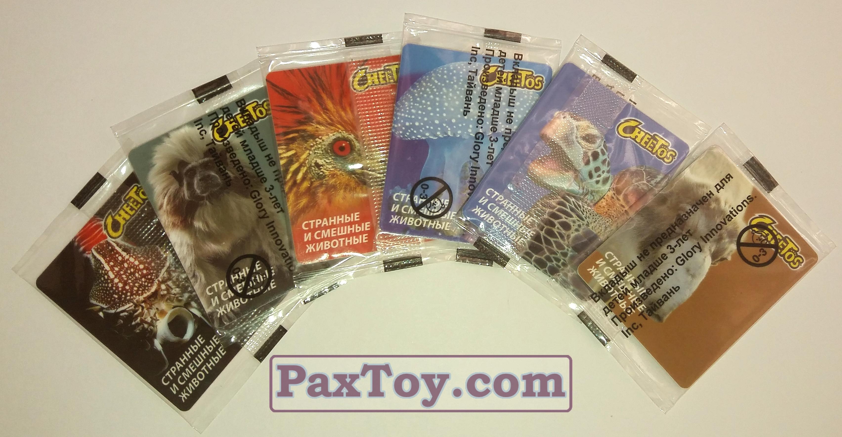Cheetos Странные и Смешные Животные (в оригинальной упаковке) - 02 paxtoy
