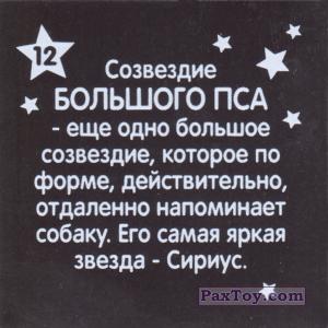 PaxToy.com - 12 Созвездие БОЛЬШОГО ПСА (Сторна-back) из Растишка: Магниты из серии