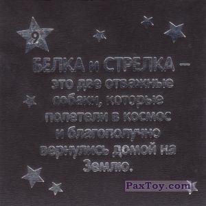 PaxToy.com - 09 БЕЛКА И СТРЕЛКА (Сторна-back) из Растишка: Магниты из серии