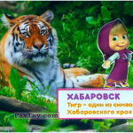 PaxToy 18 МАША И ХАБАРОВСК