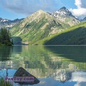 PaxToy.com - 24 МИША И АЛТАЙ (Сторна-back) из Пеликан: Маша и Медведь - Большое путешествие по стране!