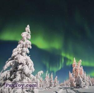 PaxToy.com - 7 МАША И МУРМАНСК (Сторна-back) из Пеликан: Маша и Медведь - Большое путешествие по стране!