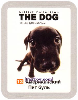 PaxToy.com - 13 Американский Пит буль из Cheetos: THE DOG: Artlist Collection