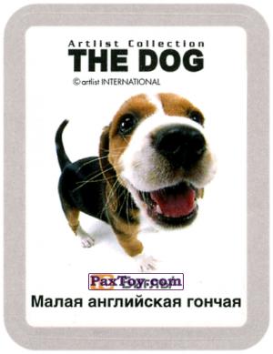 PaxToy.com - 18 Бигль / Малая английская гончая из Cheetos: THE DOG: Artlist Collection