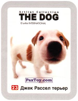 PaxToy.com - 23 Джек Рассел терьер из Cheetos: THE DOG: Artlist Collection