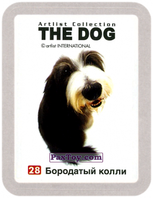 PaxToy.com - 28 Бородатый колли из Cheetos: THE DOG: Artlist Collection