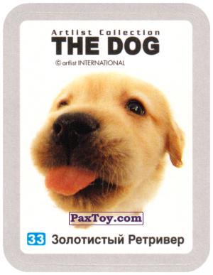 PaxToy.com - 33 Золотистый Ретривер из Cheetos: THE DOG: Artlist Collection
