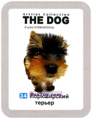 PaxToy.com - 34 Йоркширскиий терьер из Cheetos: THE DOG: Artlist Collection