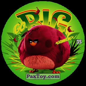 PaxToy.com - 35 GO BIG из Chipicao: Angry Birds 2017