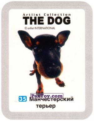 PaxToy.com - 35 Манчестерский терьер из Cheetos: THE DOG: Artlist Collection