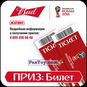 PaxToy.com - 13 Приз - Билет из Магнит и Bud: Магниты 12 Стадионов