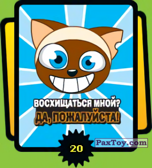 PaxToy.com - 20 Восхищаться мной да, пожалуйста! из Cheetos: Funki punky 2007