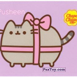 PaxToy 02 Подарочный Pusheen
