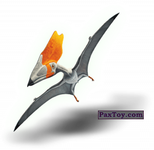 PaxToy.com - 10 Тупуксуара (Сторна-back) из