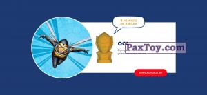 PaxToy 13 Оса (2018 Ластики Стиратели)