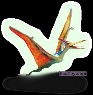 PaxToy.com - 22 Птеранодон (Сторна-back) из