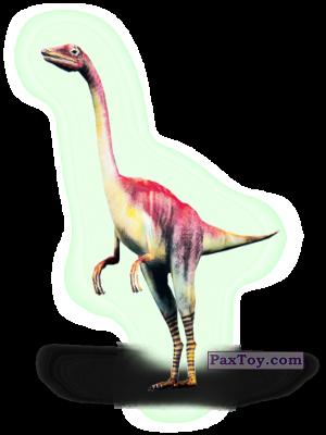 PaxToy.com - Карточка 24 Компсогнат (Сторна-back) из Novus: Динозаври Епоха 3D