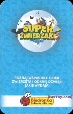 PaxToy.com - Карточка 4 Lew afrykanski (Сторна-back) из Biedronka: Super zwierzaki