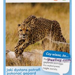 PaxToy 02 Gepard