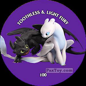 100 Toothless & Light Fury - METAL TAZO