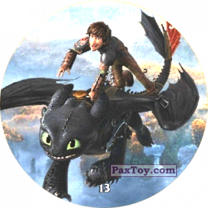 13 Hiccup & Toothless