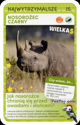 PaxToy.com  Карточка / Card 15 Nosorozec Czarny из Biedronka: Super zwierzaki