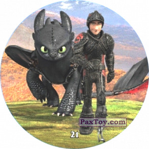 21 Hiccup & Toothless
