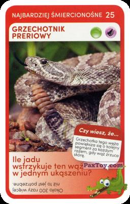 PaxToy.com  Карточка / Card 25 Grzechotnik Preriowy из Biedronka: Super zwierzaki