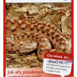 PaxToy 30 Efa Piaskowa