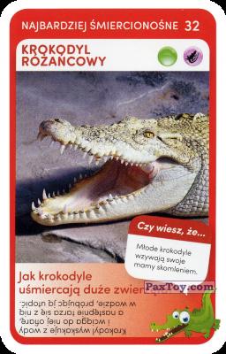 PaxToy.com - 32 Krokodyl Rozankowy из Biedronka: Super zwierzaki