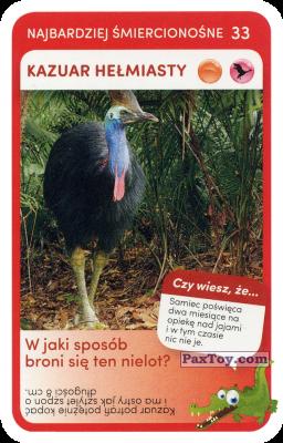 PaxToy.com  Карточка / Card 33 Kazuar Helmiasty из Biedronka: Super zwierzaki