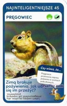 PaxToy.com  Карточка / Card 45 Pregowiec из Biedronka: Super zwierzaki