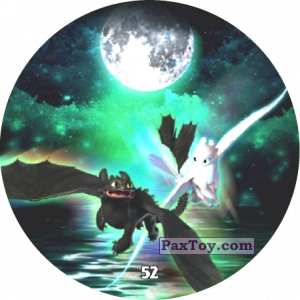 52 Toothless & Light Fury
