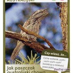 PaxToy 77 Paszczak Australijski