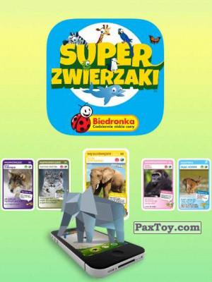 PaxToy Biedronka: Super zwierzaki