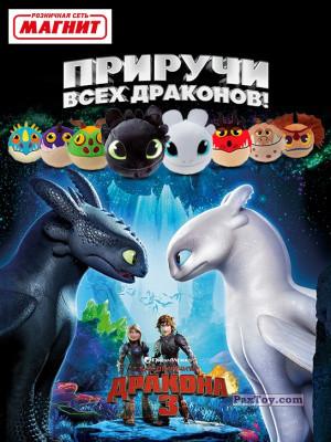 PaxToy Магнит   2019 Приручи всех драконов! logo tax
