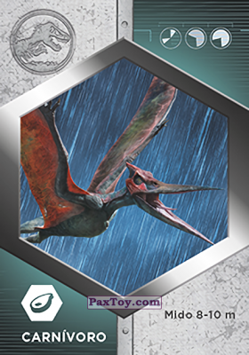 PaxToy.com - 01 Pteranodon из Supermercados DIA: Jurassic World - Cards