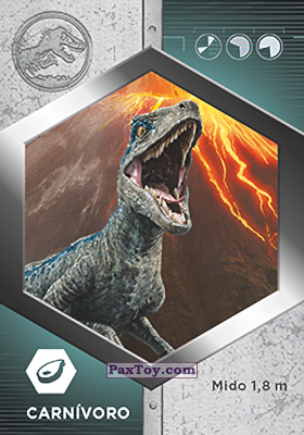 PaxToy.com - 02 Raptor - Blue из Supermercados DIA: Jurassic World - Cards