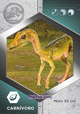 PaxToy.com - 06 Compsognathus из Supermercados DIA: Jurassic World - Cards