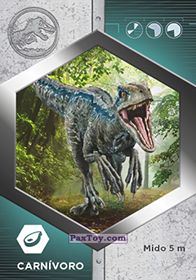 PaxToy.com - 08 Raptor - Blue из Supermercados DIA: Jurassic World - Cards