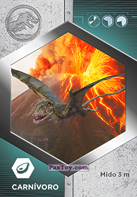 PaxToy.com - 10 Dimorphodon из Supermercados DIA: Jurassic World - Cards