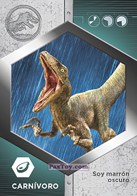 PaxToy.com - 17 Raptor - Echo из Supermercados DIA: Jurassic World - Cards
