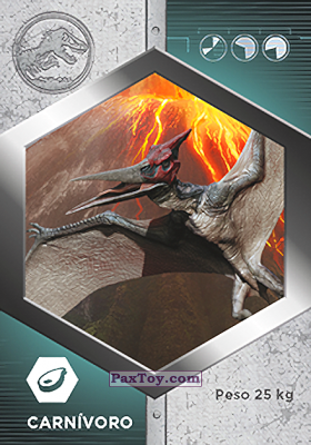 PaxToy.com - 18 Pteranodon из Supermercados DIA: Jurassic World - Cards